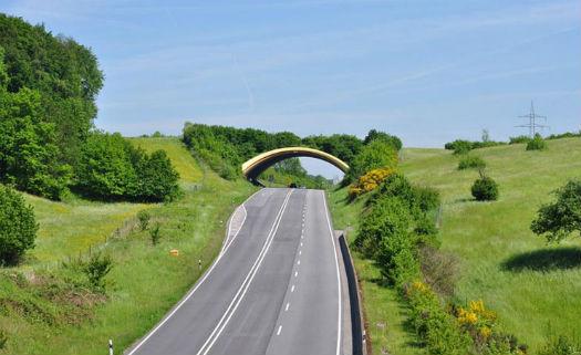 Pontes com vegetação